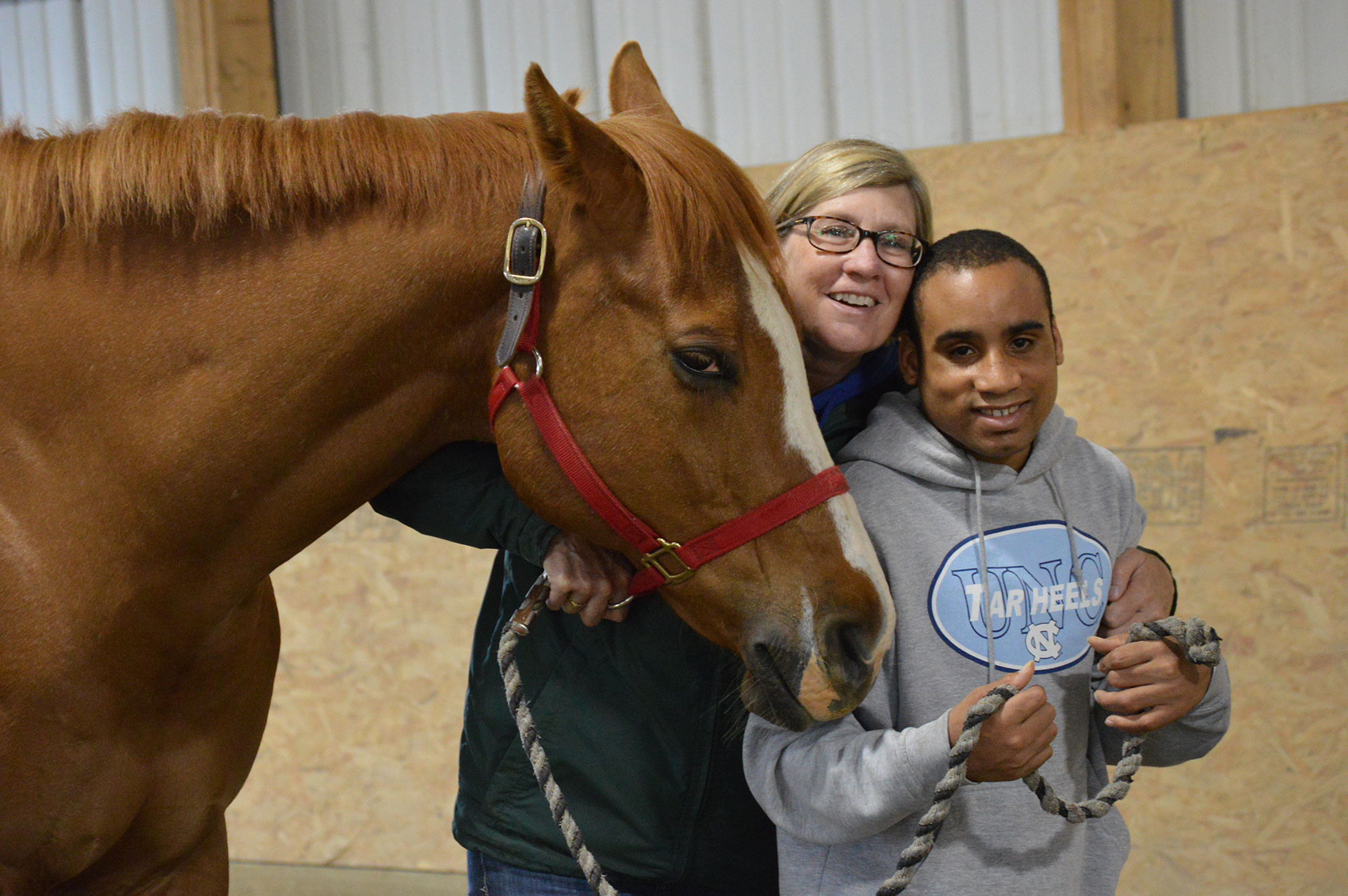 Equine-Experiences-banner-photo1